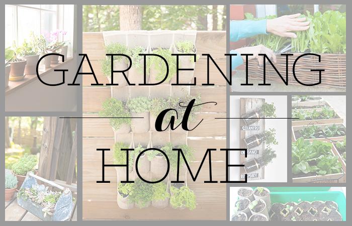 Gardening-At-Home