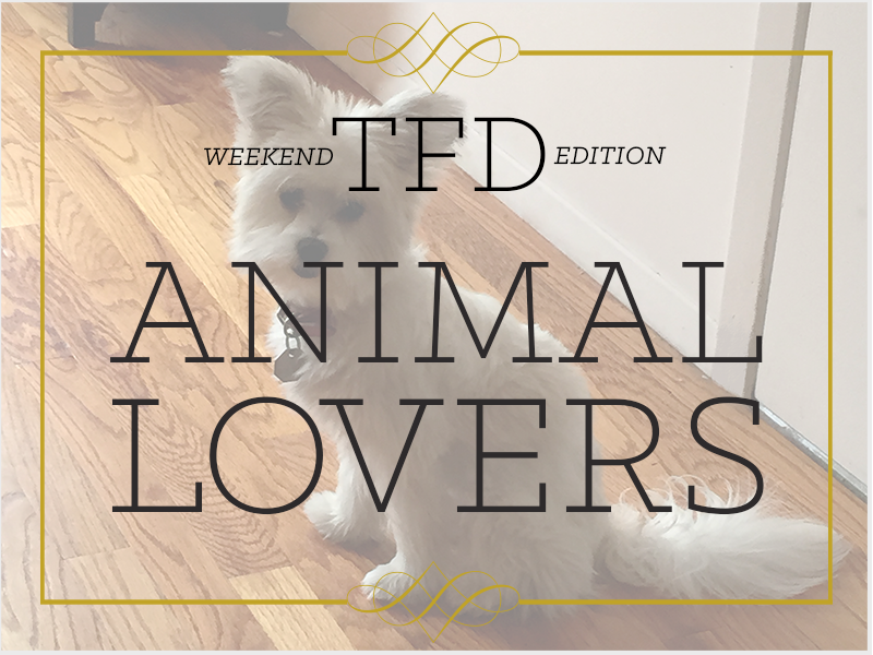 TFD_Weekend-Edition_Dog-lovers