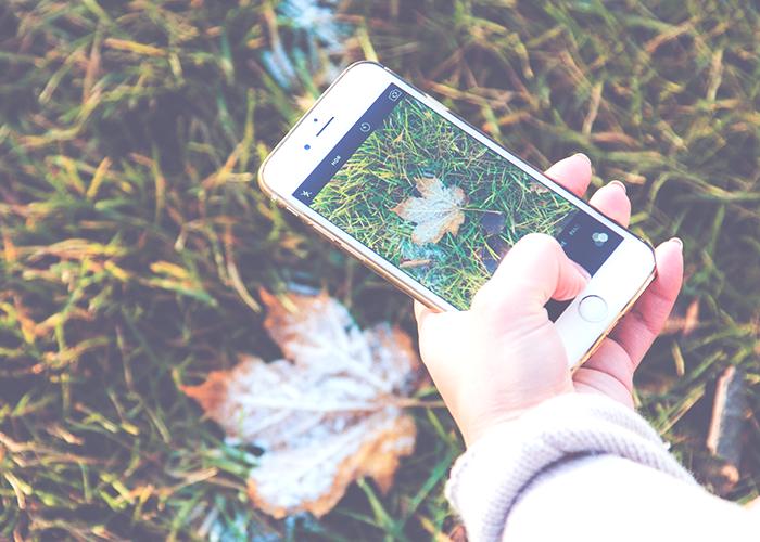 social-media-phone