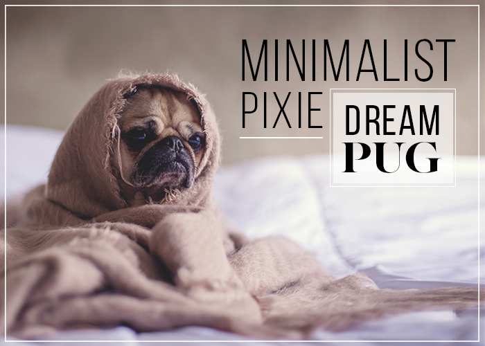 minimal-pixie-dream-pug