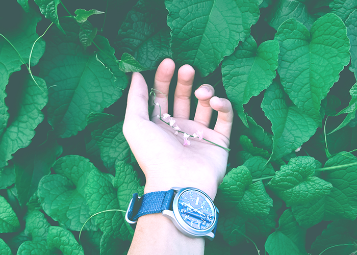 tfd_photo_-woman-hand-with-watch_leaves