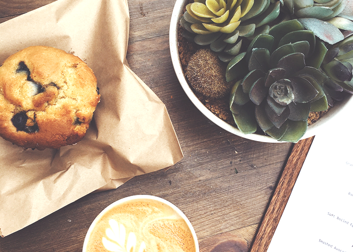 coffee-muffin-and-plant-on-table